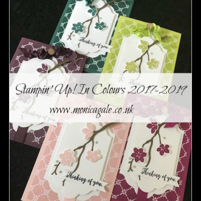 Introducing the New Stampin' Up! In Colours 2017-2019